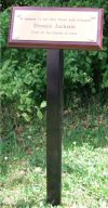 Professional metal tree stake/grave marker for plaques (STAKE)